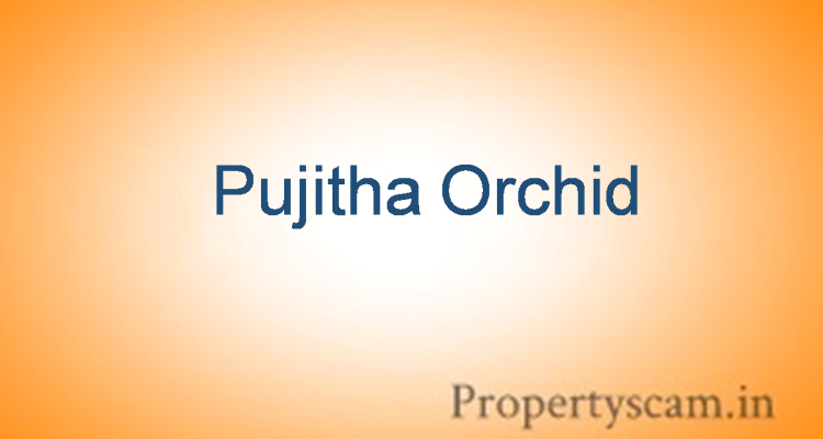 Pujitha Orchid